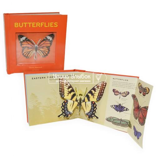 «Коллекция бабочек и забавных фактов» книга-панорама на английском. Дэвид Хокок