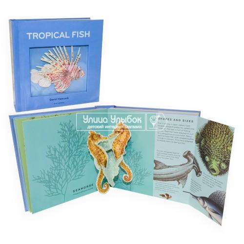 «Коллекция тропических рыбок и забавных фактов» книга-панорама на английском. Дэвид Хокок