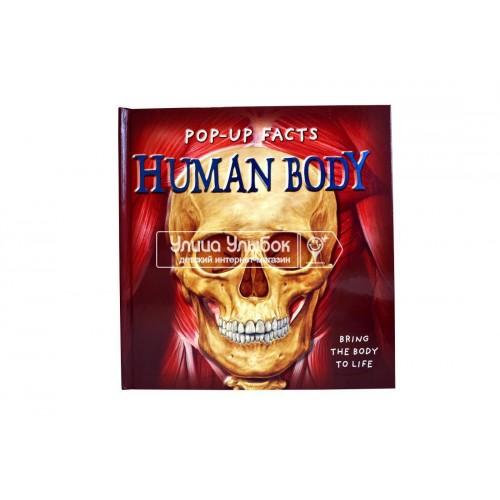 «Факты в трех измерениях. Человек » книга-панорама на английском. Ричард Дунгуорт, Сью Харрис, Эмили Хокинс,Ким Томпсон, Стив Кингстон
