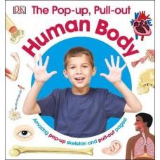 «Тело человека. Объемный скелет и выдвижные страницы» книга-панорама на английском
