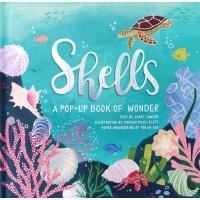 «Ракушки: Pop-up книга о чуде» книга-панорама на английском Том Адамс, Джош Льюис