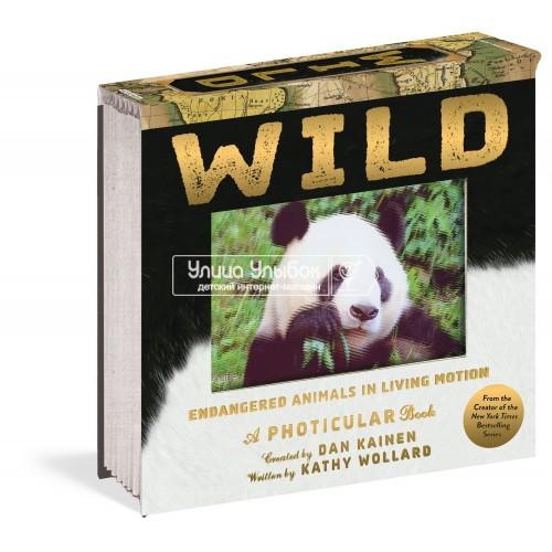 «Дикие животные. 3D кадры» фотикулярная книга (с двигающимися анимациями) на английском. Кэти Воллард,Дэн Кайнен,Дэн Кайнен