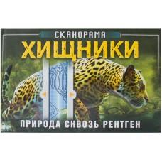 «Хищники. Природа сквозь рентген» интерактивная книга на русском