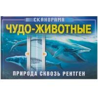 «Чудо-животные. Природа сквозь рентген» книга-сканорама на русском. А. Клейбурн
