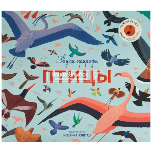 «Птицы. Звуки природы» музыкальная книга на русском. Роберт Хантер